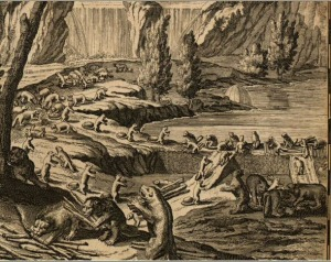 Industrious Beavers at Niagara Falls, as shown on a 1731 edition Moll's map of the British Colonies in North America. Library of Congress, Geography and Map Division. From http://www.dyasites.com/maps/nysbook/Chapter4b.htm