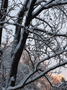 Ice under the snow.